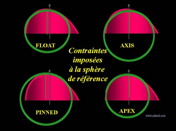 elevation surface reference contraintes float axis apex pinned