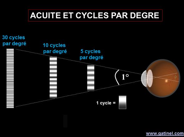 acuité visuelle et cycles par degré
