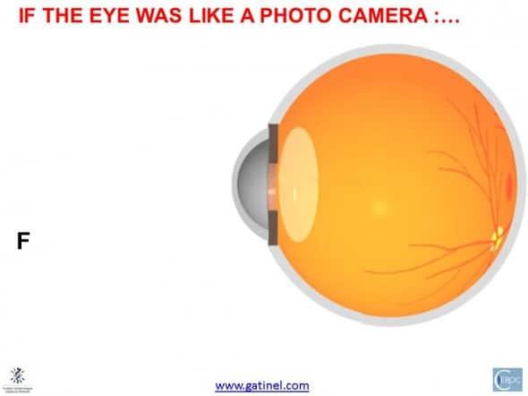 eye fixation