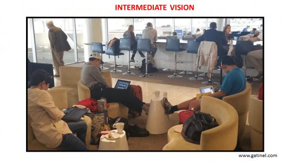 Intermediate vision