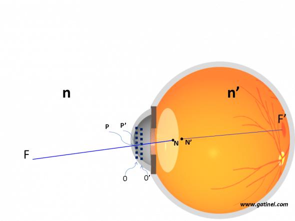 Représentation de la position des points nodaux de l'oeil humain