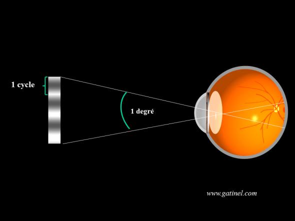 angle visuel notion de cycles par degré