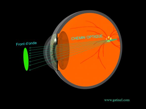 chemin optique de la lumière dans l'oeil