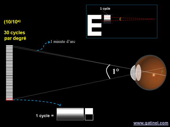 représentation des correspondance entre cycles par degré et acuité
