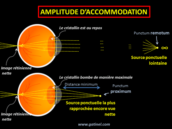 amplitude d'accommodation (schéma)