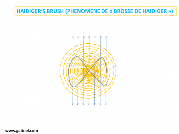 explication Haidiger