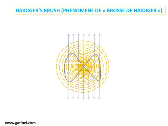 explanation Haidiger