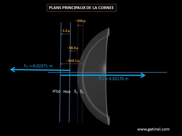 plans principaux cornée