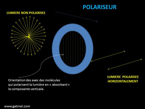 Polariseur