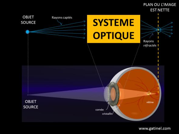 oeil rayons et système optique