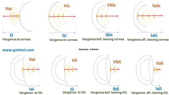 vergence propagation in the eye